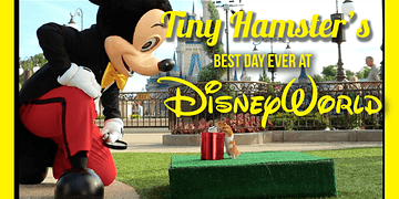 Tiny Hamster's Best Day Ever at Walt Disney World (Ep. 9)