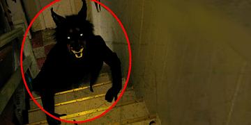 5 Criaturas Desconocidas Captadas En Camara En La Vida Real!