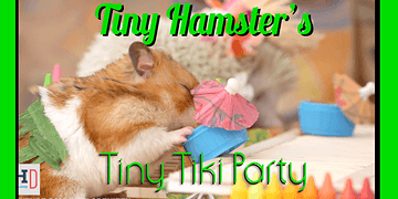Tiny Hamster's Tiny Tiki Party (Ep. 6)