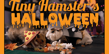 Tiny Hamster's Halloween (ep. 10)
