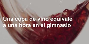Una copa de vino al día equivale a una hora de gimnasio. Además tiene muchos beneficios. :O