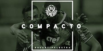 Melhores momentos - Palmeiras 2 x 0 Fluminense - Campeonato Brasileiro 2016