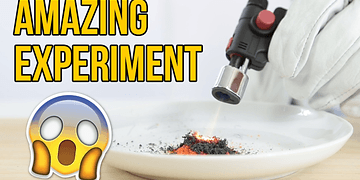 Amazing Science Experiment