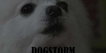 Gabe the Dog - Dogstorm